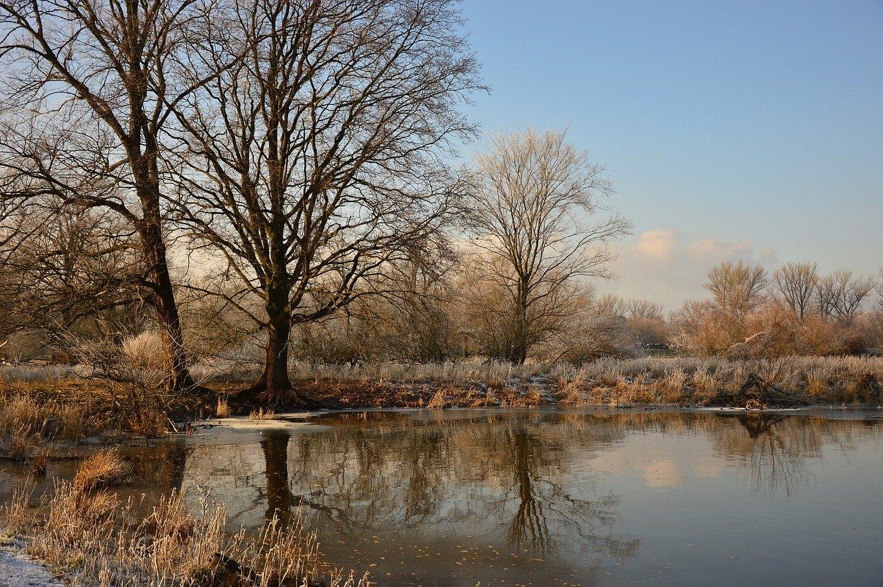 Wyłowiono ludzkie ciało w rzece Wielopolka - Zdjęcie główne