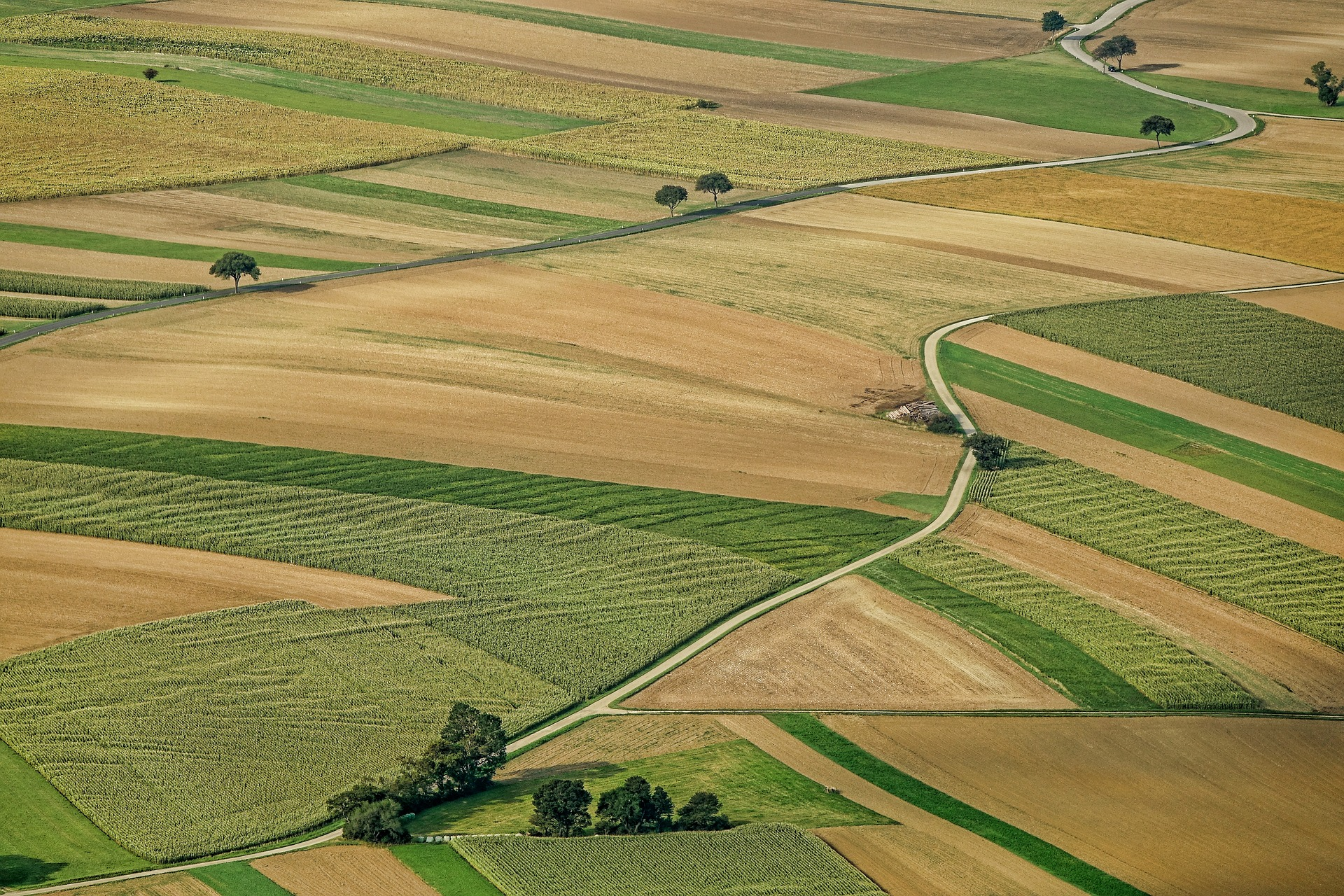 Te nieruchomości Skarbu Państwa przeznaczone są do dzierżawy w gminie Sanok [LISTA] - Zdjęcie główne