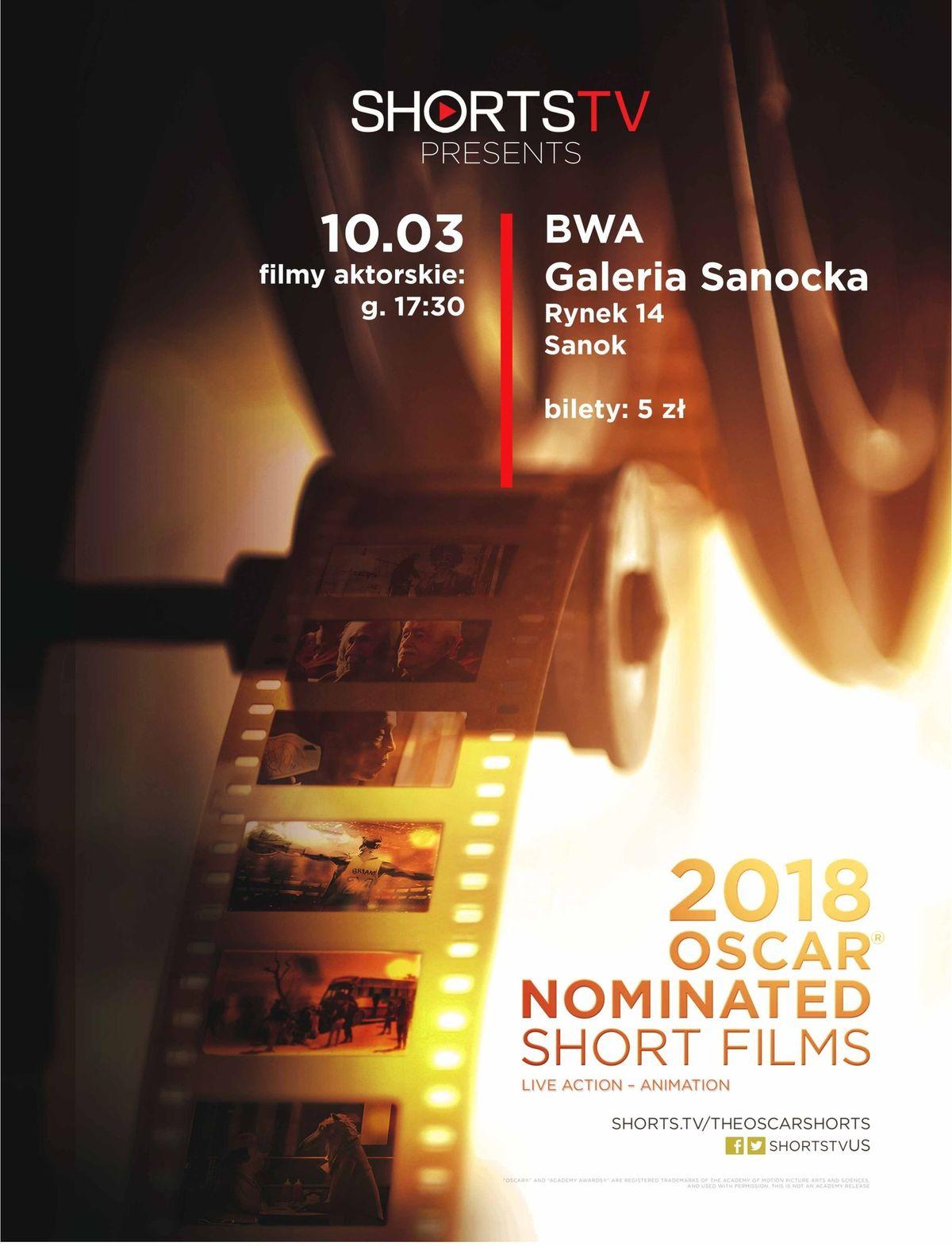 Pokazy filmowe kandydatów do Oscara w BWA - Zdjęcie główne