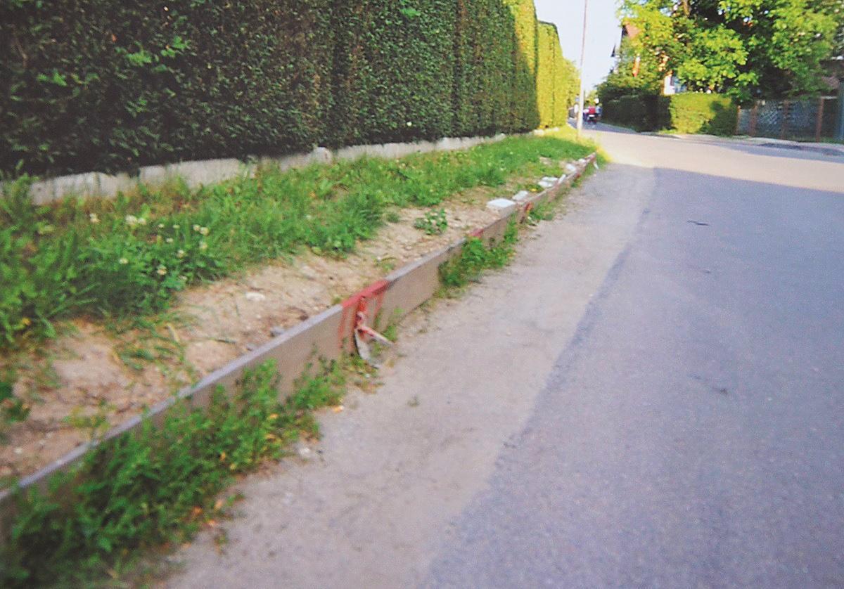 Samowolka z ogrodzeniem - Zdjęcie główne